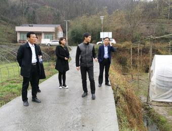 韩城市共裕村赴三河村考察学习皇菊种植产业
