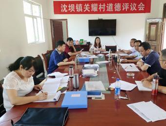 区人大常委会副主任陈兴庆在沈坝镇督导脱贫攻坚问题整改工作