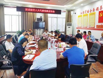 新城街道人大工委组织区人大代表第十团开展集中视察调研活动