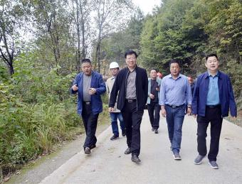汉滨区人大常委会主任李森文视察指导张坝路改扩建项目建设工作